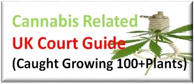 Caught Growing over 100 Cannabis Plants Sentence Guide UK Courts